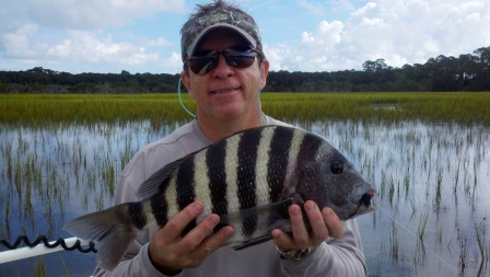 compressed-terrys-sight-fished-sheepshead