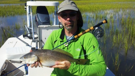 compressed-tims-tailing-red-fish