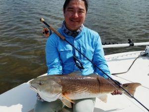 15.5 pound red fish hog